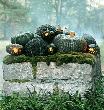 Dark Green and Black Pumpkins