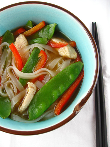 Spicy asian chicken soup recipes